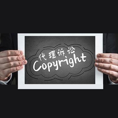 知识产权侵权代理/商评委行政诉讼